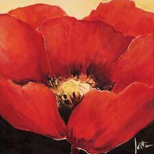 Jettie Roseboom: Rojo Beauty (belleza) I Camilla-imagen de pantalla Flores rojas