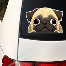 Super Cute Pug Decal - Pug Mom  Full Color Indoor / Outdoor -  I love my Pug