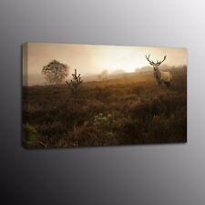 HD Prairie Deer Photo Canvas Prints Landscape Wall Art Poster Home Decor