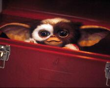 Gremlins 2: The NEUF Lot [1005867] 8x10 PHOTO (autres tailles disponibles)