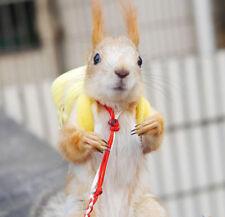 Squirrel Parrot Rat Hamster Ferret Bird Outgoing Packet Bag Schoolbag Travel Toy