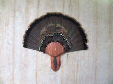 Solid Cedar Turkey Fan / Beard Mounting Kit -02