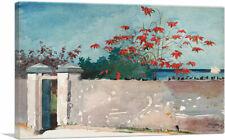 ARTCANVAS A Wall - Nassau 1898 Canvas Art Print by Winslow Homer