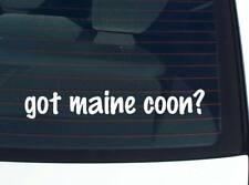 got maine coon? CAT CATS FUNNY DECAL STICKER ART WALL CAR CUTE
