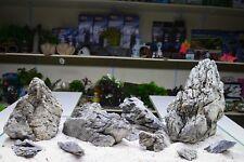 SEIRYU RYUOH STONE ADA STYLE AQUASCAPING IWAGUMI AQUARIUM ROCK