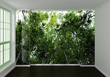 3D Green Bamboo Leaves Nature Wall Paper Wall Print Decal Wall AJ WALLPAPER CA