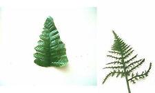 5 for £1.30 Artificial Green Fern Leaf wedding craft Buttonhole corsage