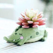 Cartoon Mini Crocodile Whale Plant Pot Resin Animal Pot Planter Home Decor