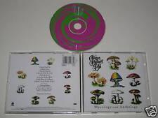 ALLMAN BROTHERS BAND/MYCOLOGY AN ANTHOLOGY (SONY4890)CD