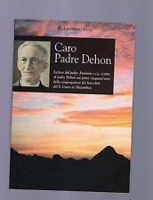 caro padre dehon - p.anonimo s.c.j   2003