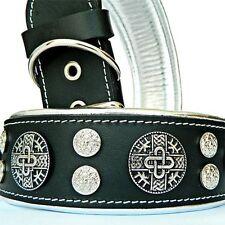 Hektor Molosser Halsband 6,5cm breit Fila Dogo Rottweiler Dogge Bulldog Mastiff