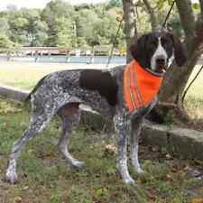 AKC Pet Safety Dog Bandana with Reflective Stripes Orange Sizes S-L