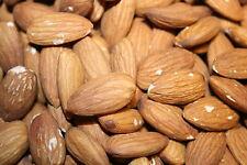 3 Pounds Whole Raw California Almonds Bulk Box 3lbs!!
