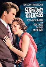 Splendor in the Grass (DVD, 2000) w/Natalie Wood Warren Beatty Sealed Free Mail