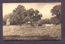 Stoke Poges THE LOWING HERD Sepia Vintage Postcard
