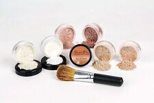 XXL Mineral Makeup Kit Finish powder Brush Full Size Bare Skin Foundation Cover