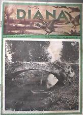 DIANA rivista di Caccia Venatoria 30 aprile 1937 Tortora Fagiano starna Sicilia