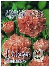 Semi/Seeds GAROFANO Chabaud Rosa