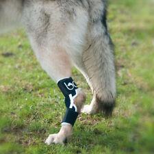 Balto Dog Hock Brace: Joint Arthritis, Tarsal, Lameness. BT-HOCK Orthopaedic