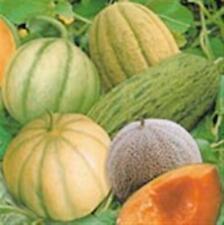 Heirloom Heritage MELONE 20 diverse varietà certificata biologica Agricoltore