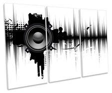 Modern Music Speaker DJ TREBLE CANVAS WALL ART Box Framed Print
