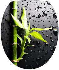 Sticker abattant de WC déco toilette Bambou 35x42cm Réf 358