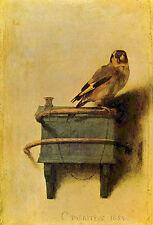 Carel Fabritius - Bird Vintage Fine Art Print