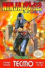 RGC Huge Poster - Ninja Gaiden Original Nintendo NES BOX ART II III - NGN001