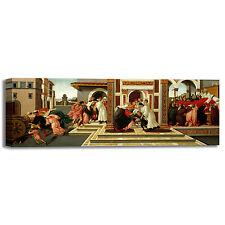 Botticelli miracolo e morte san Zanobi quadro stampa tela dipinto telaio arredo