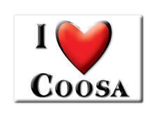 SOUVENIR USA - GEORGIA GIFT FRIDGE MAGNET AMERICA I LOVE COOSA (FLOYD COUNTY)