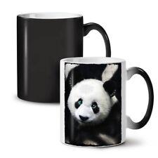 Giant Panda Bear NEW Colour Changing Tea Coffee Mug 11 oz | Wellcoda