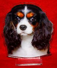 statuette photosculptée chien cavalier king charles 9 dog hund estatua perro