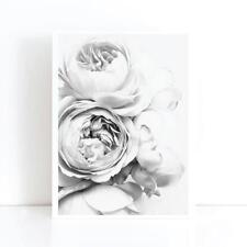 Peony Peonies Flower Art Print Poster Canvas Scandi Blush Black White (pint)