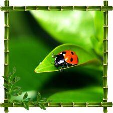 Stickers déco bambou Coccinelle5220