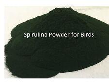 Spirulina Powder for Birds, Grown in USA, High Protein