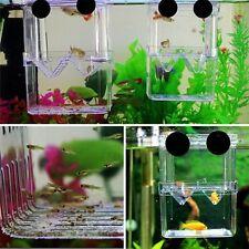 Fischzucht Aquarium Baby Fisch Inkubator Isolierbox Fisch Tank Doppeltank L/S