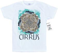 Cirrus artwork T-shirt BONOBO inspiré
