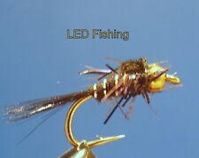 6 x UV FRITZ GOLDHEAD  SHORTSHANK NYMPHS SIZE 12 BY AQUASTRONG (109)