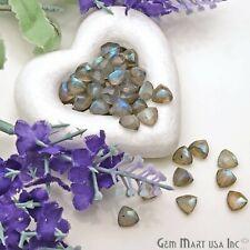 AAA Natural Labradorite Trillion Loose Stones Jewelry Setting Stone Precious 7mm