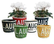 Mini Clay Flower Plant Pot Colourful planter garden Office Home Chic decoration