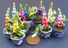 1:12 Single Polymer Clay Foxglove In A Ceramic Pot Dolls House Miniature Flowers