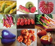 Tomaten Chili Paprika Gurken Mais Bohnen Kürbis Karotten Zucchini Melonen Samen