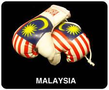 MALAYSIA MALAYSIAN Flag Mini Boxing Gloves For Car