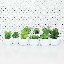 BOTANICS MINI SUCCULENTS -Easy Desk Decor Home Artificial Greenery In Pot **NEW*