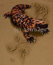 GILA MONSTER TRAX--Reptile Lizard Desert Science Nature T shirt S, 2XL only NEW!