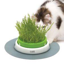 Catit Senses 2.0 hierba para gato Plantador Kit Con/sin semillas 3 Pack anti bola de pelo