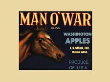 Horse Man o' War Washington Apple Vintage Fruit Crate Label Repro FREE SHIPPING