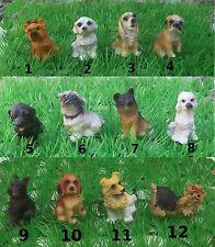 chien miniature 4,5 cm, maison de poupée,collection,vitrine, 12 modèles chiens-G