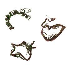 Repitals Climbing Jungle Vine Natural Habitat Decor for Lizard Geckos