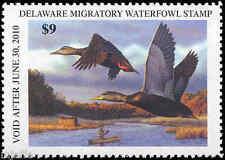 Delaware #30 2009 State Duck Black Ducks by Richard Clifton
